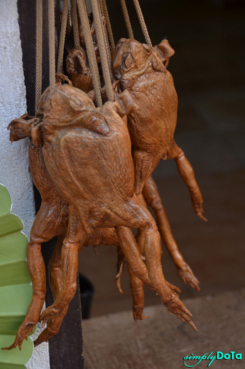 Frog Bags