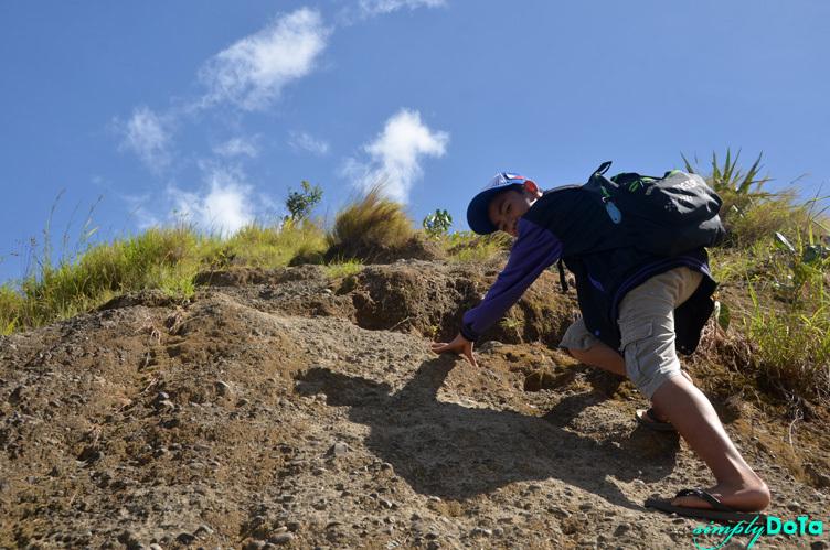 Crawling the Way Up