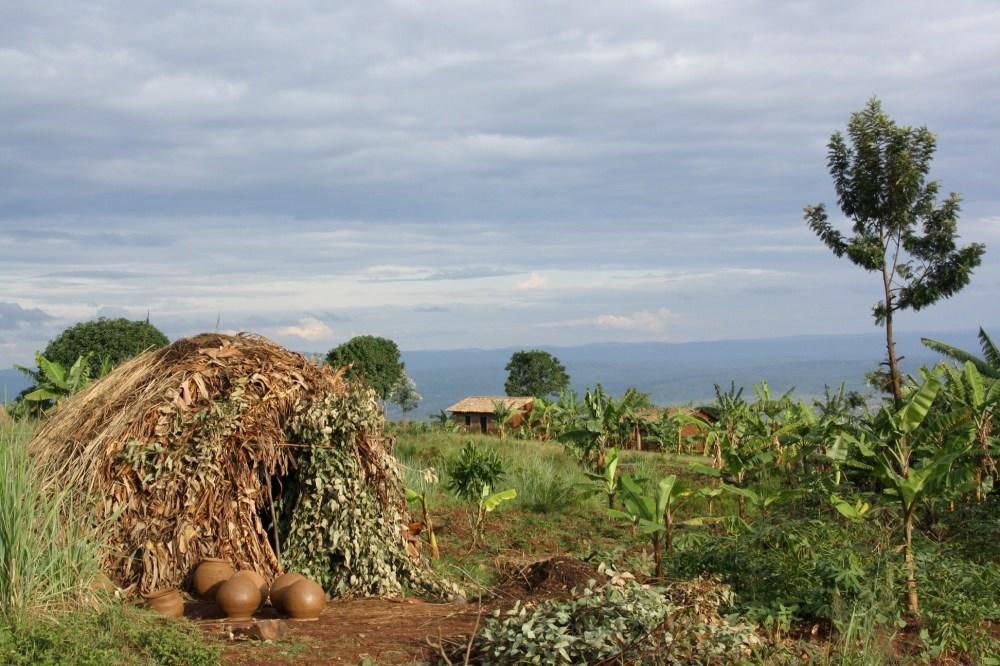 A Twa's hut in Muyinga province