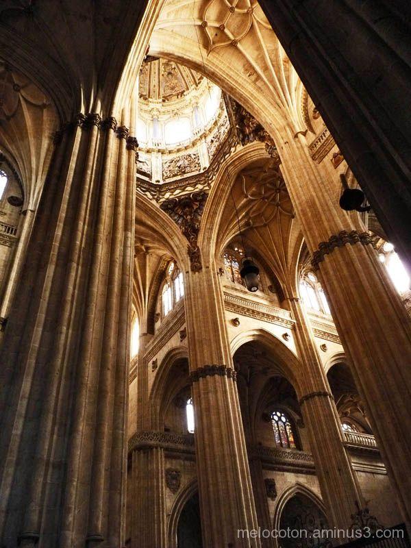 Catedral,(Salamanca). 3/4