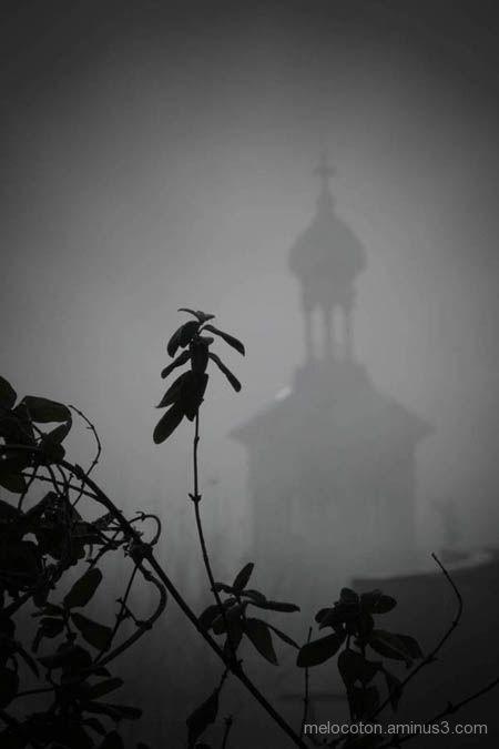 Salamanca fog, 7/9