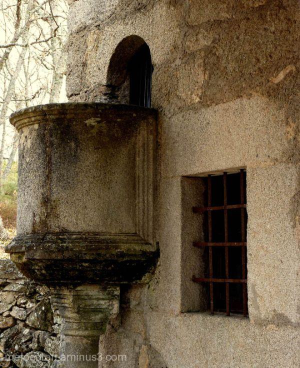 Camino de las raíces , (La Alberca)