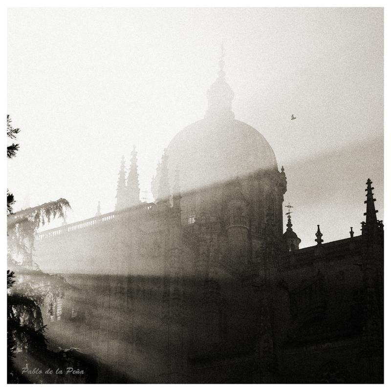 The light in the fog