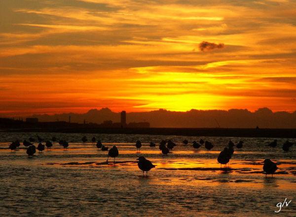 Le soleil se couche sur De Haan