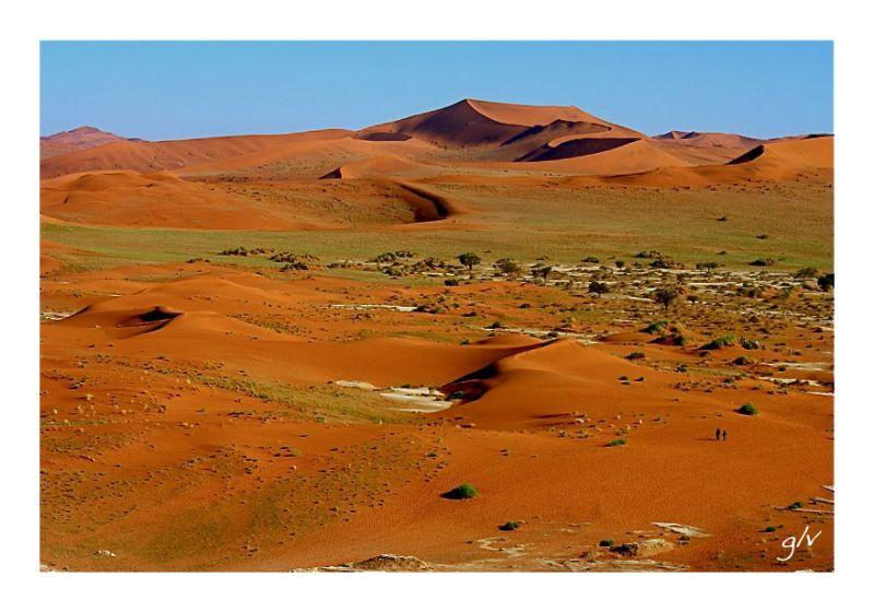 afrique africa namibie namidia desert