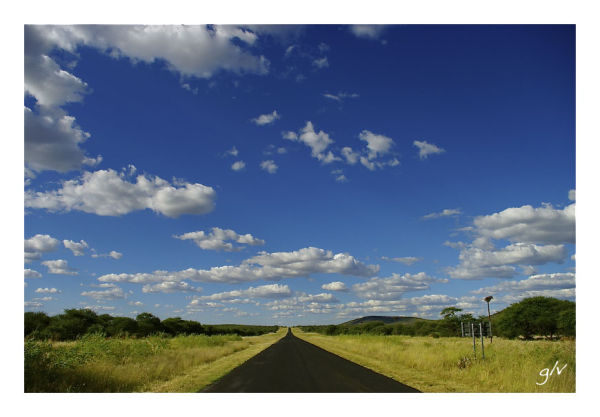 Landscape of Namibia (IV) - Lush and green