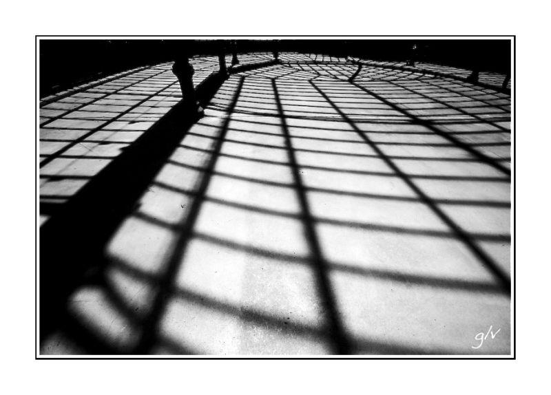 Contrejour & Silhouette - I