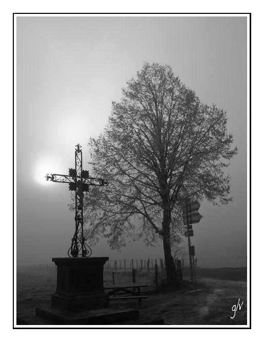 Contrejour & Silhouette - II