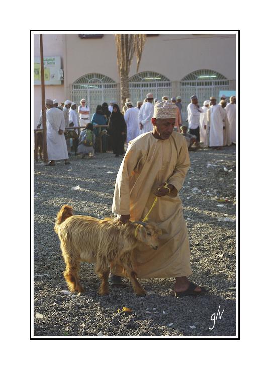 Le marché aux chèvres / the goat market (1)
