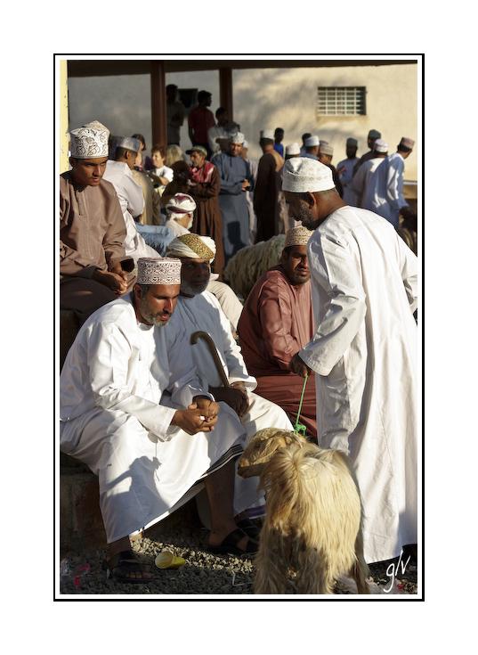 Le marché aux chèvres / the goat market (2)