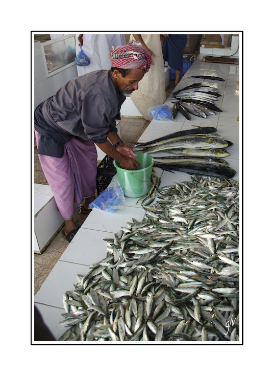 Souks et marchés d'Oman (08)
