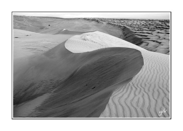 Dans le désert (IV)