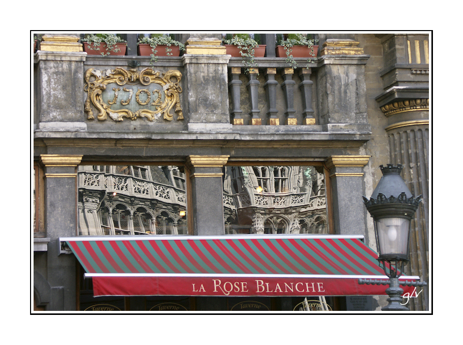 La plus belle place - La Rose Blanche