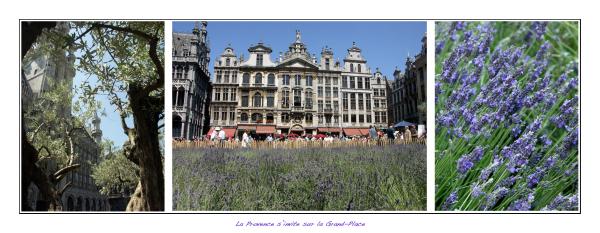 La Provence s'invite sur la Grand-Place