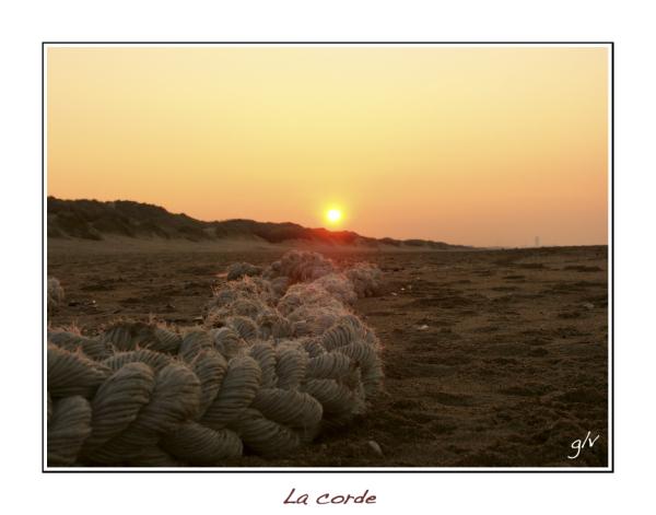 Envie de soleil / Need for sun (04)