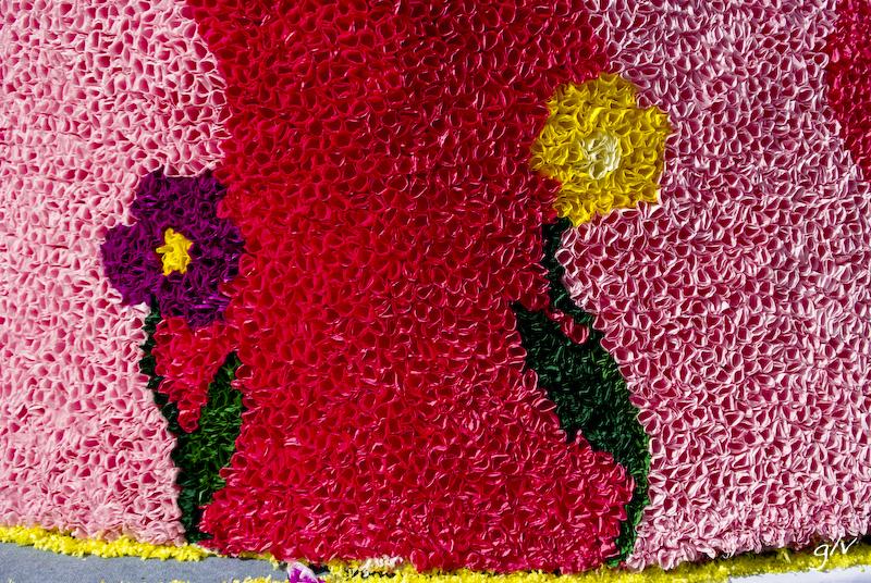Un monde fleuri / a flowery world (01)