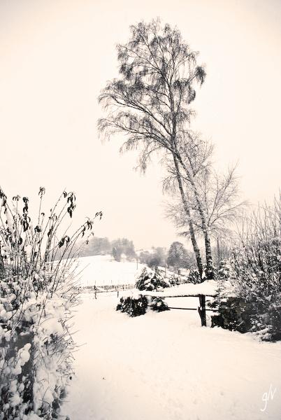 Blanc manteau 08