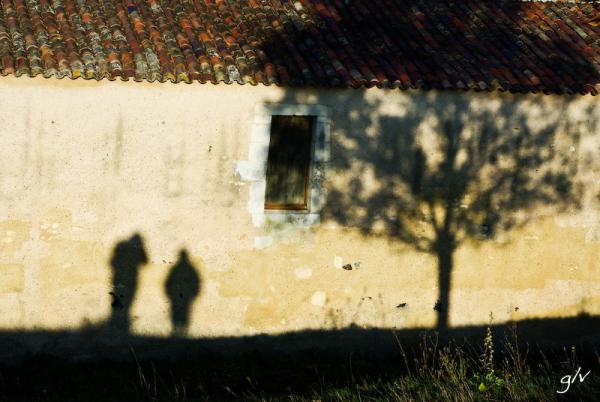 Seul ou à Deux / Alone or a Pair (12)