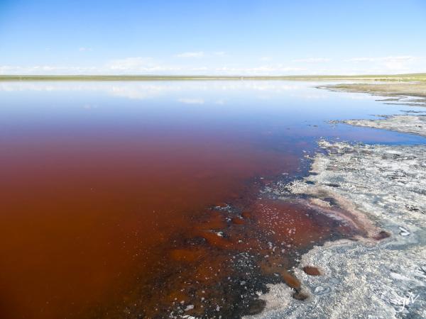 Couleurs de Mongolie / Colors of Mongolia (07)