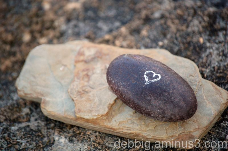 white doodle rocks