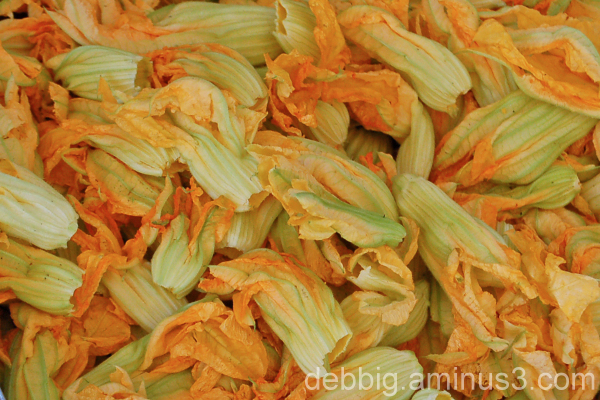 yellow zucchini flowers eat