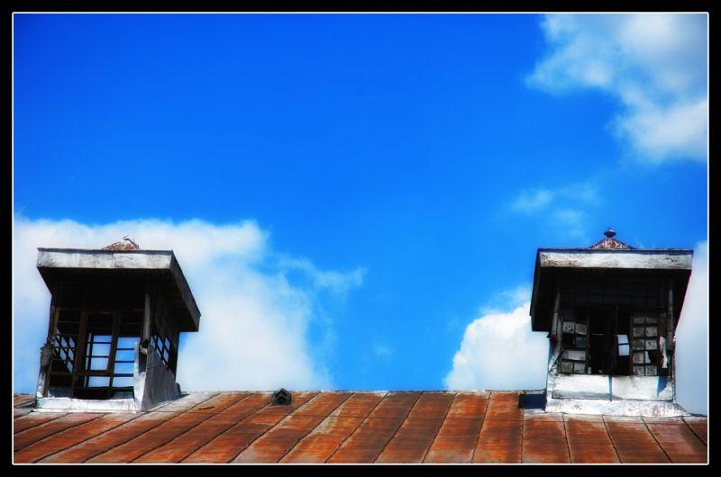 Shelter In Sky