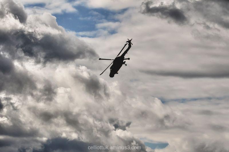 Skies-Flexible flight characteristics