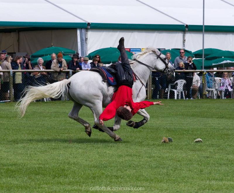 Horses-Litter Patrol-Genghis Khan style