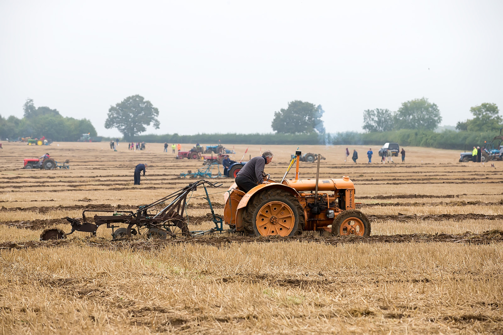 The Ploughing Competition