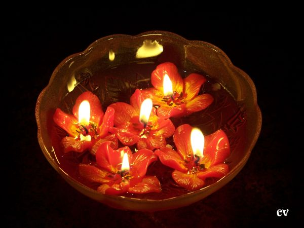 Candle lights flower