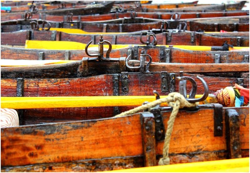 The boats of Naini Lake