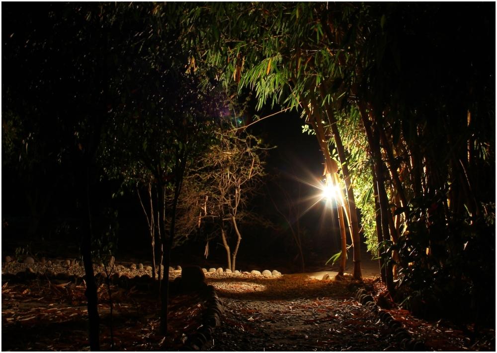 Brighten up the dark