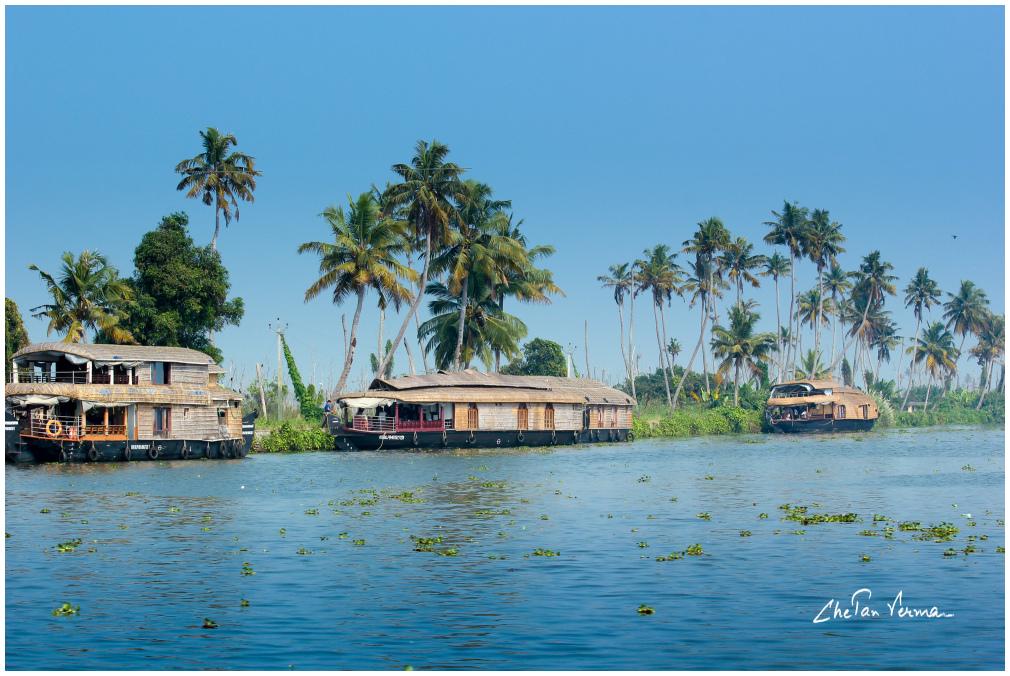 Life along the Kerala backwaters