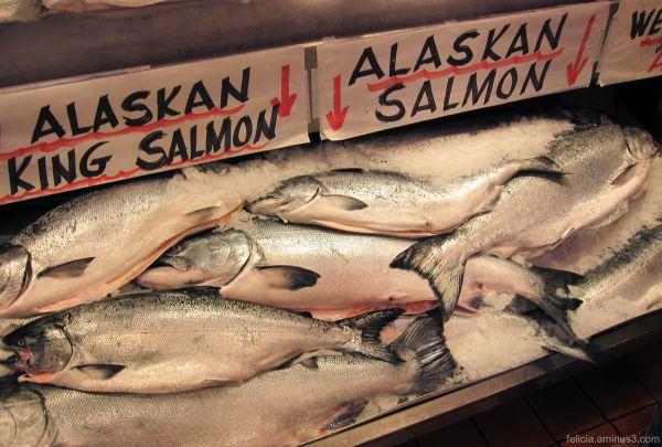 Alaskan Salmon