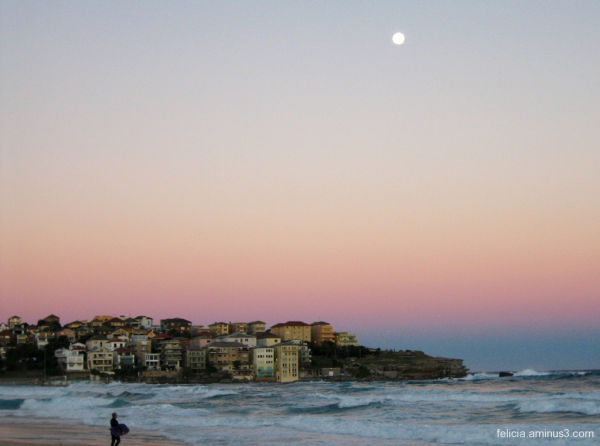 Moon Over Bondi