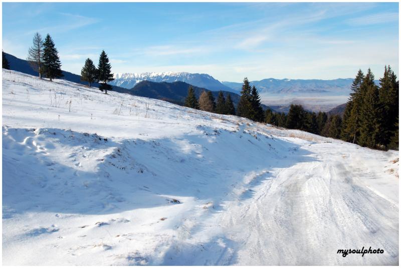 Mountain winter road