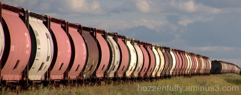 Rail Car Graveyard