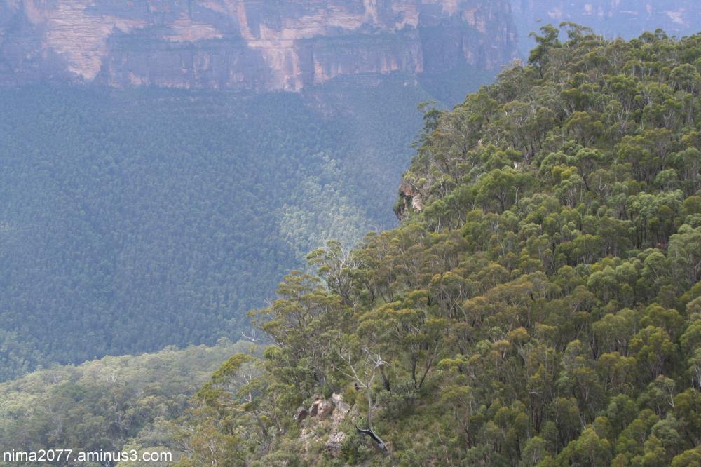Anvil Rock Blackheath Australia