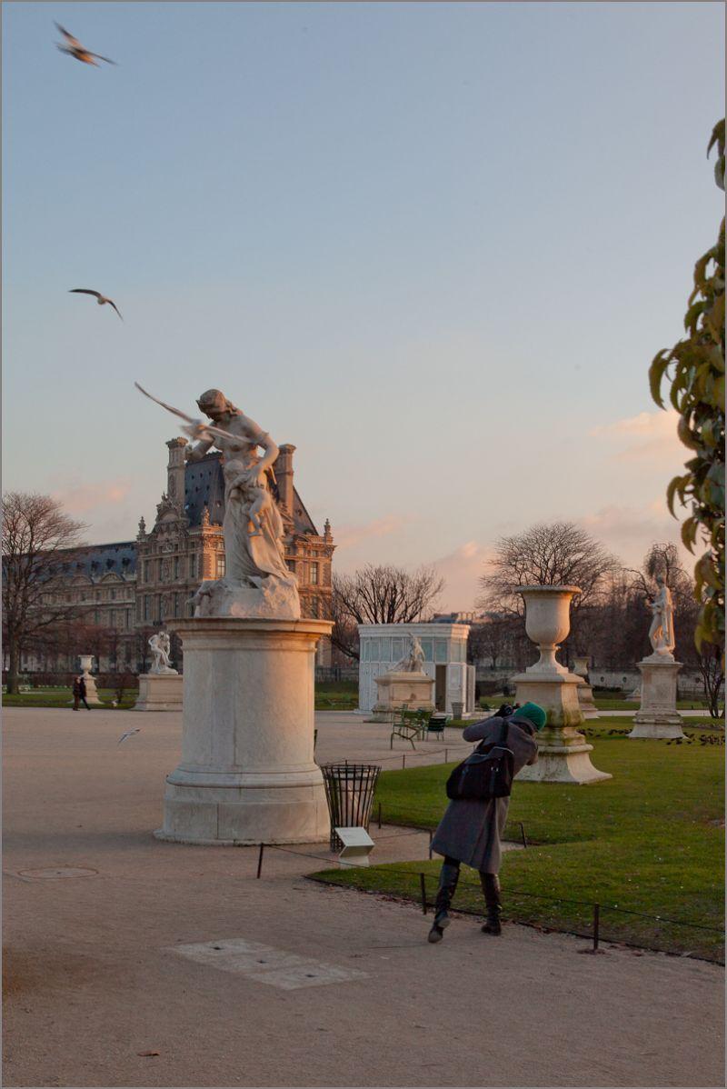 Les OIseaux attaquent aux Tuileries