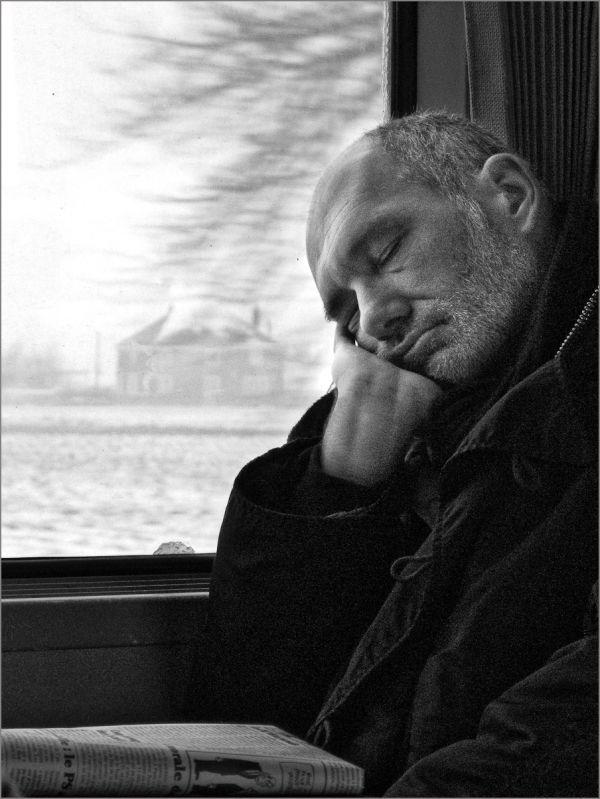 Le canard endormi