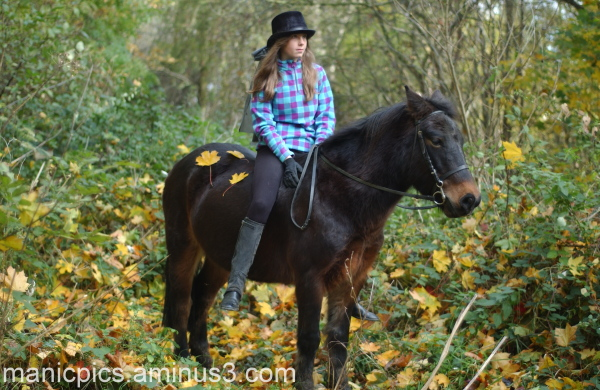 Autumnal pony