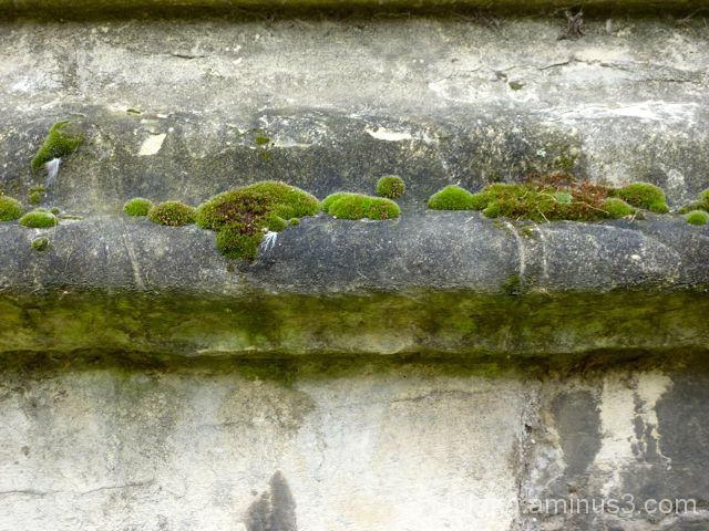 More Stonework from Cambridge