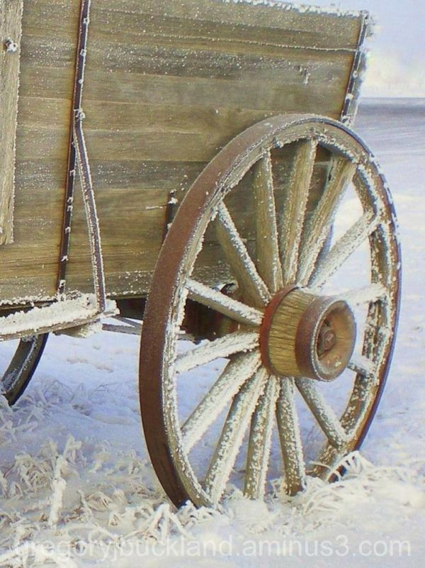frosted wagon wheel