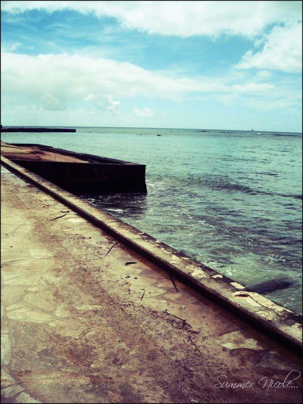 along the hawaiian shore