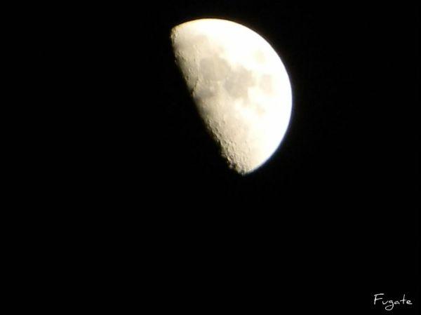 half moon at midnight