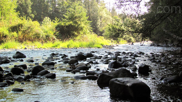 Lewisville River