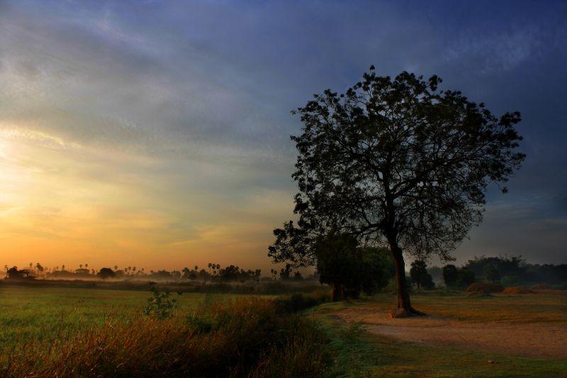 Sunrise, beautiful