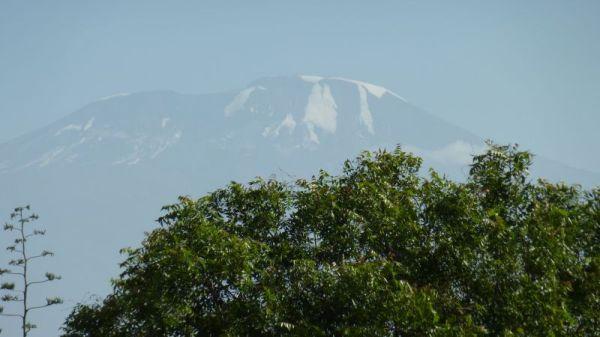 Ghost of Kilimanjaro