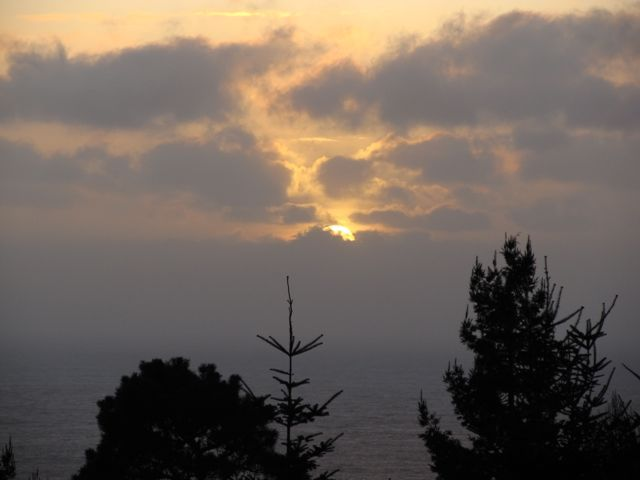Sea Ranch Sunset