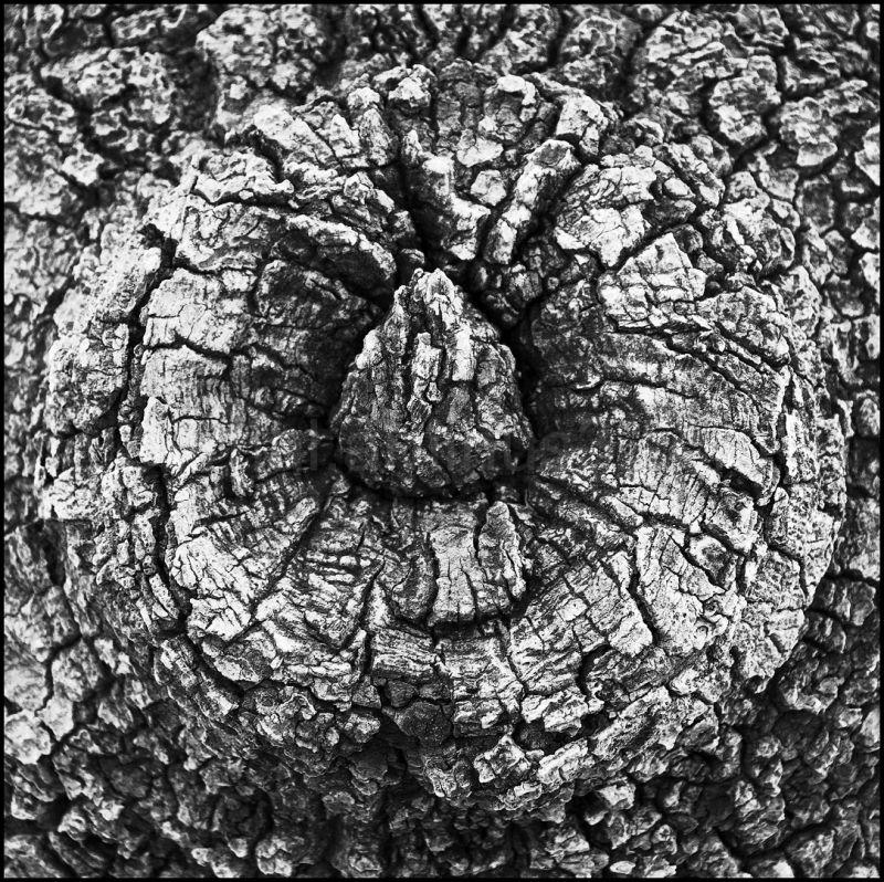 madera,volcan